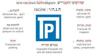 Racine hnh