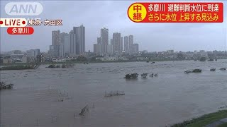 多摩川 川幅が普段の3倍に・・・グラウンドが水の底(19/10/12)