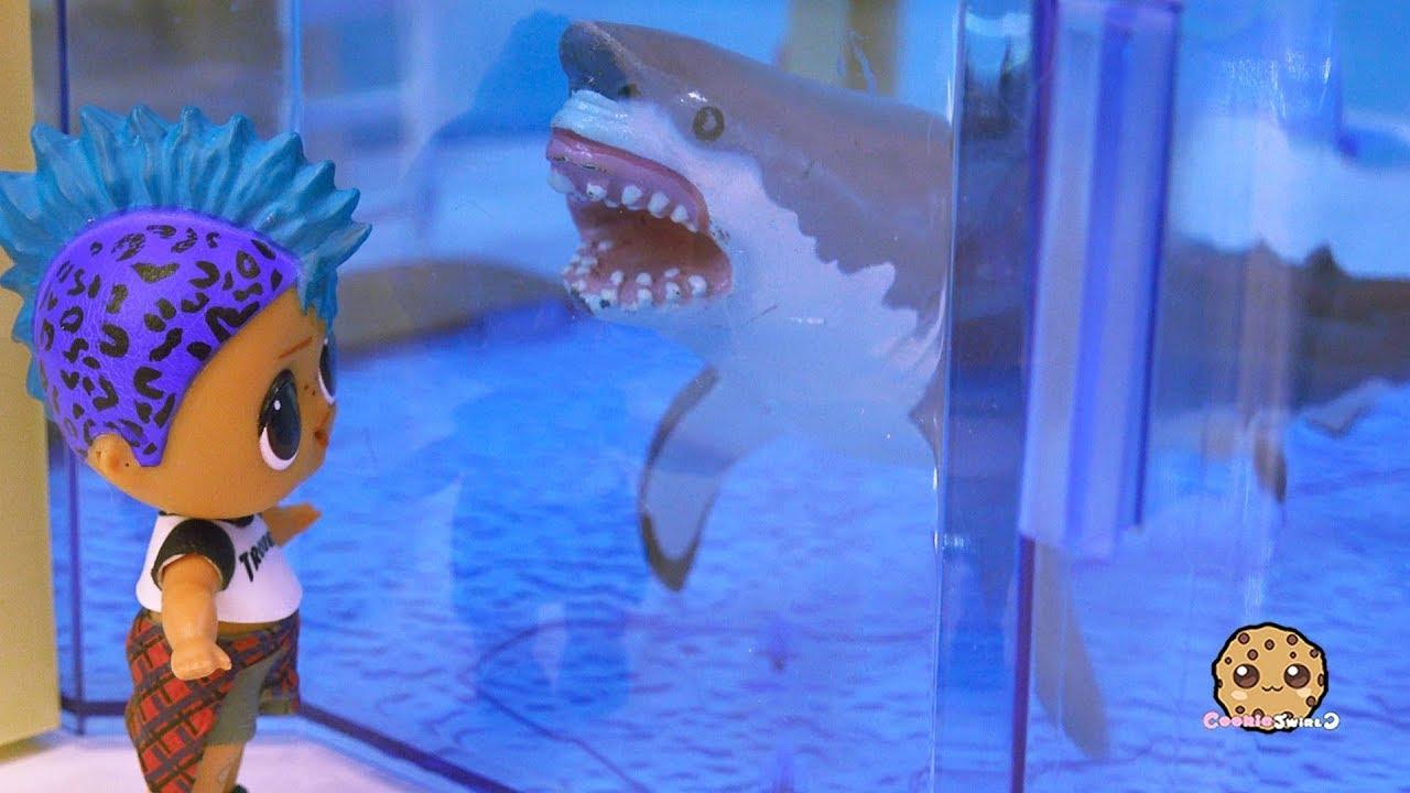 Download Great White Shark At Aquarium ! Part 5