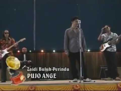 ZAIDI BULUH PERINDU - PUJO ANGE
