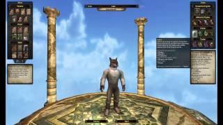 Vanguard: Saga of Heroes - Classes - Overview