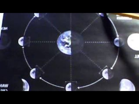 The True Gravitational Effects Of The Moon And The Bodies Of Living Beings