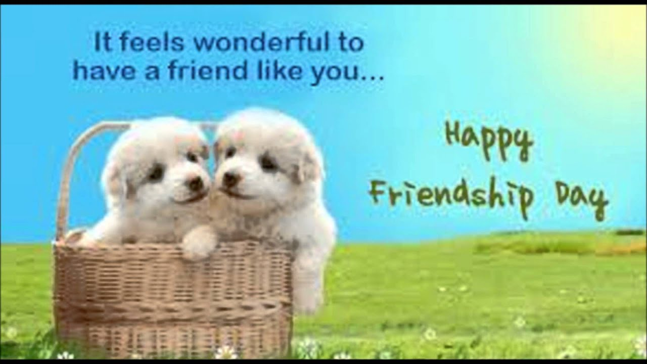 Images friendship day impremedia happy friendship day 2015 wishes sms greetings quotes whatsapp video message kristyandbryce Images