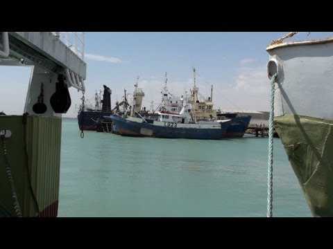The New Colonizers: Spain's Appetite For Hake Threatens Namibia's Fish