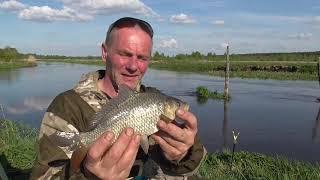 Первая пробная рыбалка на сома в мае Красивое место на реке Рыбалка в Беларуси 2021