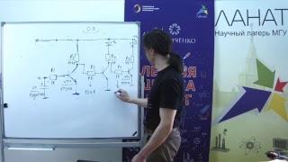 2-й урок по Электронике