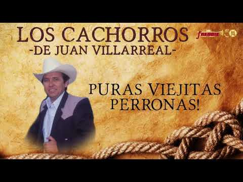Los Cachorros De Juan Villarreal - Puras Viejitas Perronas!