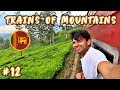 MOST BEAUTIFUL TRAIN JOURNEY IN SRI LANKA - ELLA TO KANDY 🇱🇰🇱🇰