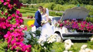 Свадебный трейлер ( с.Коваливка) съемка квадрокоптером