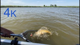 Рыбалка на закидушки коротыши с лодки на макуху Июнь 2020