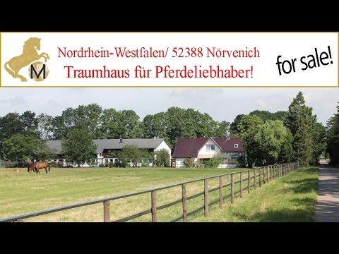 Reitimmobilie, Haus mit Stall und Reithalle, Nordrhein-Westfalen, Köln, Nörvenich zu verkaufen