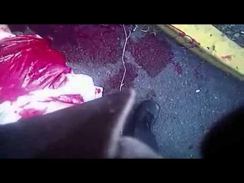 The killing of Dillon Taylor (WARNING: GRAPHIC)