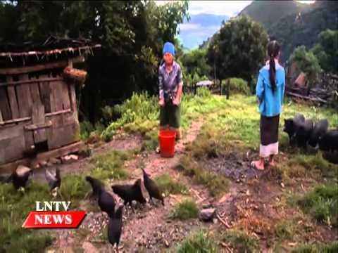 Lao NEWS on LNTV: Australia has provided more than US$3 mil for the Community Development.20/11/2014