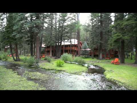 Red Setter | Arizona Videography | Greer, Arizona