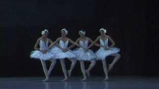 SwanLake Dance of the Cygnets.mp4