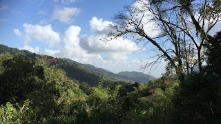 Trinidad: Conservation and Education Hand in Hand