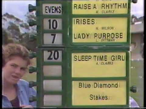 1991 Blue Diamond Stakes