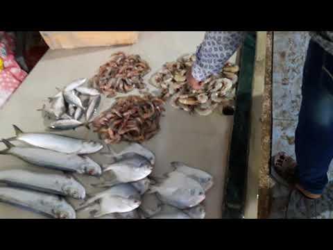 Malwan fish market