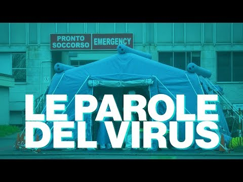 Le parole del Coronavirus - Timeline