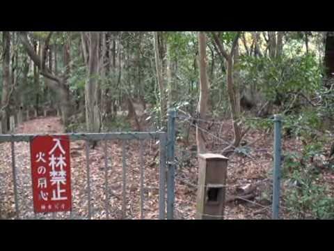 上御井神社