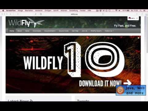 WebSocket Tutorial: 1) Wildfly 10 Einrichten