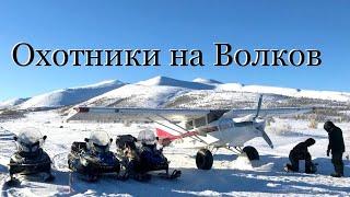 Охота на волков Якутия 2020 год