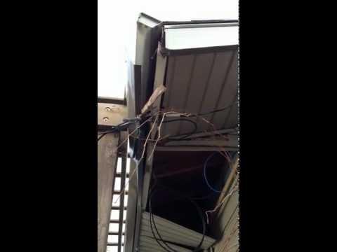 4151 42nd street SW Calgary Property Damage