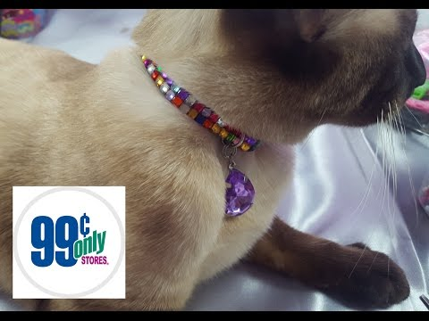 diy-99cents-only-cat-collar