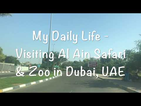 Daily life with Yuna- Al Ain Zoo, UAE