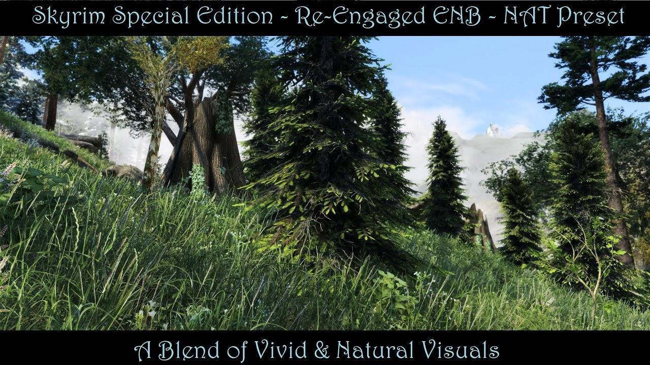 SkyrimSE Re-Engaged ENB at Skyrim Special Edition Nexus