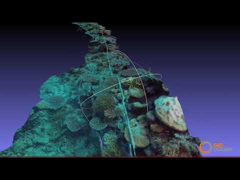Mini-ROV Seismic Survey Node Inspection Ocean Bottom Nodes OBC