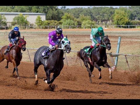2018 Horse Races