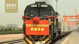 China's first ocean-rail cold chain supply network set up in Dalian