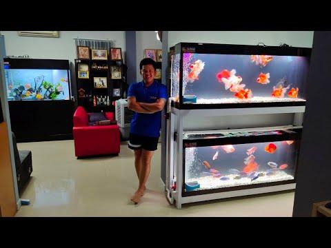 เสือ เทพารักษ์ : O4FS ชุดตู้ปลา 72 15 24 กรองข้าง 2 ชั้น Set 4