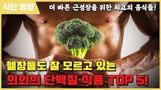 헬창들도 잘 모르는 의외의 단백질 식품 TOP 5!