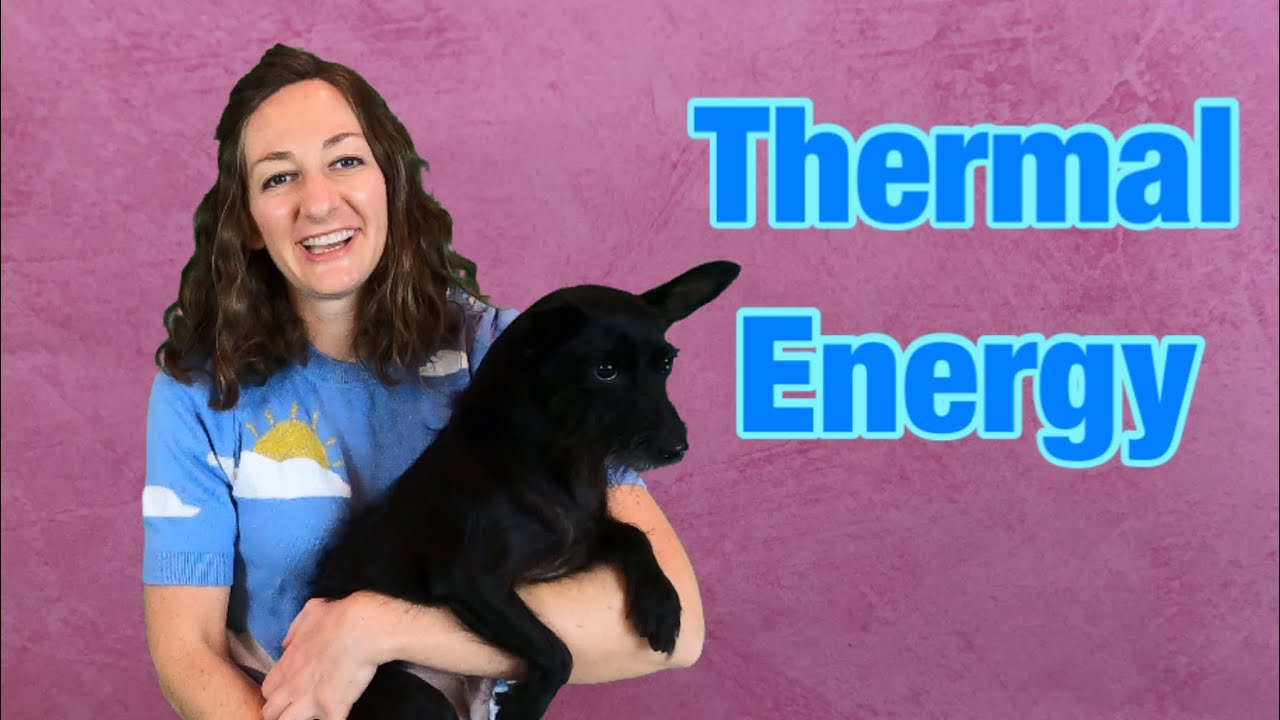 Thermal Energy / Heat Energy Lesson for Kids   Share My Lesson [ 720 x 1280 Pixel ]