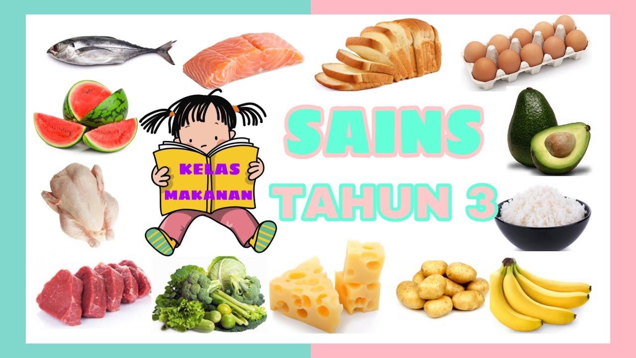 Sains Tahun 3 Kelas Makanan By Cikgu Liza Youtube