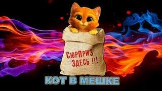 Кот в мешке.Смешной Сибирский кот Гришка.Смешные коты и кошки.