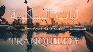 آيات السكينة لدفع القلق والهموم | AYAT OF TRANQUILITY - SAKINAH