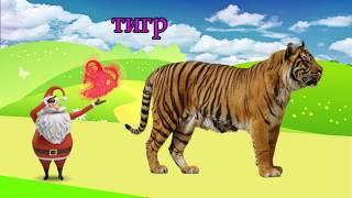 учить животных для малышей - животные для детей - видео развивающее #49