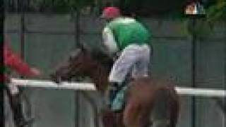 Afleet Alex Belmont Stakes 2005 - amazing kick in the end!