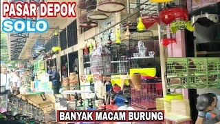 Download lagu PASAR BURUNG DEPOK SOLO LENGKAP DAN TERBESAR DI JAWA TENGAH