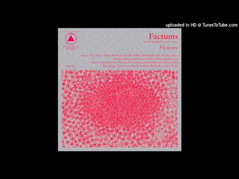 factums - see inside