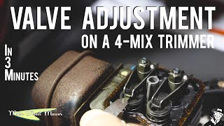 Valve Adjustment on a Trimmer in 3 minutes! - MainStreetMower