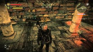 The Witcher 2 - Заказ на гаргулий (The Gargoyle Contract)