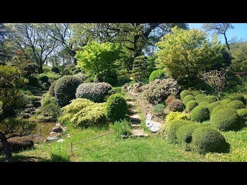 Am nagement zen autour d 39 une maison by olivier dubois for Le jardin zen beaumont monteux