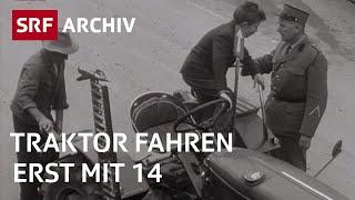 Traktor fahren mit 14 | Neue Vorschriften für Traktorfahrer (1960) | SRF Archiv