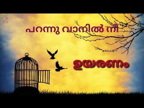 Manjerum Vinnoram  Thaniye Mizhikal  Guppy Malayalam Movie  Tovino Thomas .