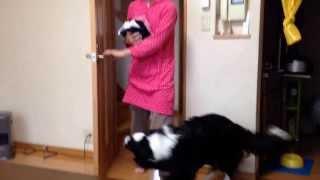 YouTube Captureから 毎日繰り広げられるお姉ちゃんとナイトの儀式です(...