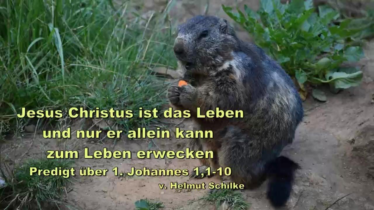 Jesus Christus ist das Leben und nur er allein kann zum Leben erwecken